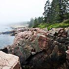 Rocky Shores of Acadia by nolenphotograph