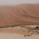 Bad luck at Sossusvlei  by Euphemia