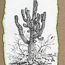 A Giant Saguaro Cactus of Southern Arizona by James Lewis Hamilton