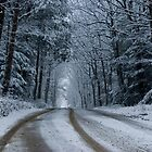 Snow On A Country Road (as-is) by Gene Walls