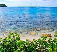 Esperanza Beach waters by marcy413