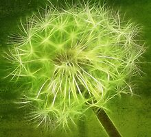 fractalius dandelion in green by Aimelle