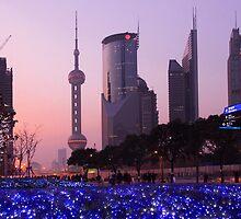 Skyline - Shanghai Pudong by Mark Bolton