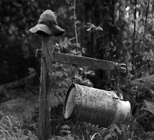 Mr Mail Box (B&W) - Northern Rivers NSW by CasPhotography
