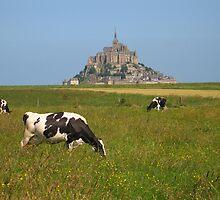 Mont Saint Michel - a view by roumen