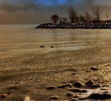 Winter by Stefania Avram