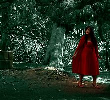 Little Red Riding Hood lost in the woods... by Simon Perkin