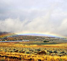 Low Rainbow by R. Mike Jacobson