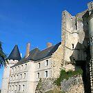 Chateau de La Rochefoucauld  by Fay  Hughes