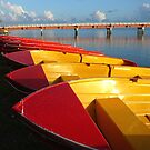 Red Hire Boats - Bribie Island by Barbara Burkhardt