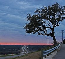 Country Road at Sunset by LauraBroussard