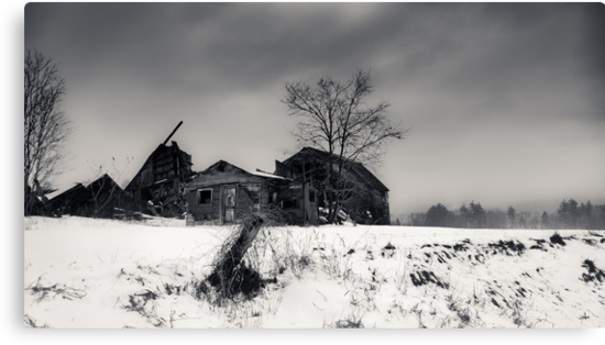 Forgotten in NH  by Edward Myers