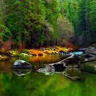 Merced River Autumn-Yosemite National Park by Floyd Hopper