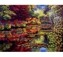The Colors on Monet's Pond Photographic Print