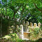 Overgrown ruins - Sintra (Portugal) by Christine Oakley