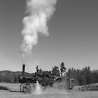 Oldtime plowing by Jeff Ashworth & Pat DeLeenheer