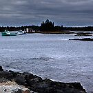 Blue Rocks, Late October by George Cousins