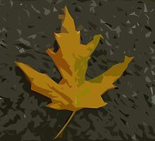 maple leaf by Christian Langenegger