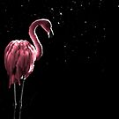 Flamingo in Pink by Peter Denness