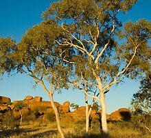Afternoon Light - Devil's Marbles Conservation Reserve by Dilshara Hill
