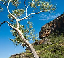 Nourlangie Rock - Kakadu National Park, NT by Dilshara Hill