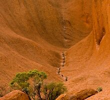 Uluru Rock Face by Dilshara Hill