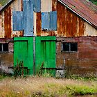 Icelandic rust by Andrianne