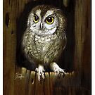 Screech Owl  by Elaine Bawden