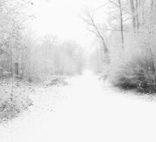 Snowy Lane by Pamela Jayne Smith