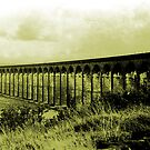 The 24 Arch Viaduct At Penistone. S Yorkshire by Andrew  Bailey