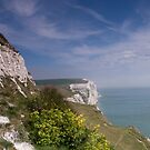 White cliffs of Dover  by Carly Smith