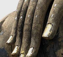 Hand of Buddha by Amy Hale