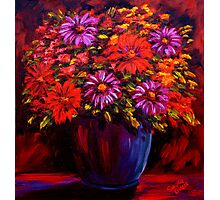 Daisies in a Pot Photographic Print