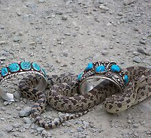 Snake Charms by © Betty E Duncan ~ Blue Mountain Blessings Photography