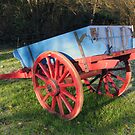 Old farm cart by John Quinn