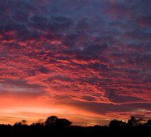Hallow Sunset panorama by David Benton