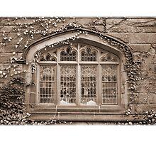Princeton University by Jaee Pathak