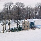 Just A Dusting On The Farmhouse by Gene Walls
