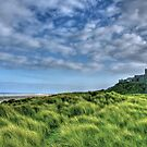 """Bamburgh Castle, Untamed Landscape"" by Bradley Shawn  Rabon"