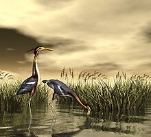 Purple Heron by Walter Colvin