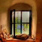 Monastery window by john0