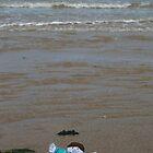 Flat Stanley on the Beach in Wales by Allen Lucas
