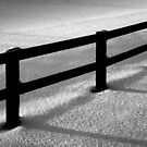 Winter Fence by James Coard