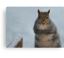 I'm Chilly!! Canvas Print