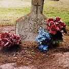 Rural Cemetary near Little Rock Arkansas by Barbara Wyeth