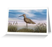 Whimbrel Greeting Card