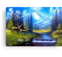 Sierra Mountain Meadow   Canvas Print