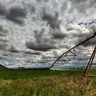 Farmland Centre Pivot by Rob  Southey