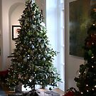 Christmas At The Anderson Arts Center by kkphoto1