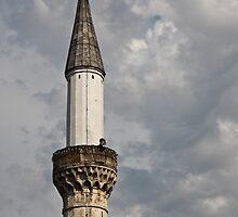 Minaret by Nickolay Stanev